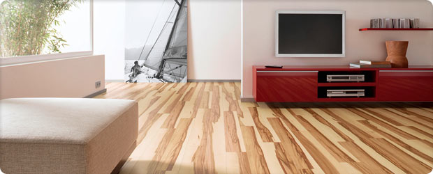 visualiser parquet pas cher