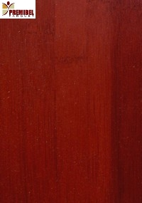 illustration parquet rouge