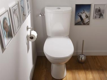 photo parquet wc